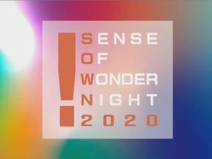 今年最も光ったインディータイトルは!?「センス・オブ・ワンダー・ナイト 2020」をレポート