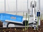 自動野菜収穫ロボットが農家を救う! 人手不足解消と生産性アップを目指すinaho
