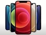 iPhone 12、Pixel 5、Xperia 5 IIの実機登場!au、ソフトバンクの冬スマホを生放送レビュー