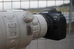 キヤノンのフルサイズミラーレス「EOS R6」は最強のモータースポーツ撮影カメ ラになった!