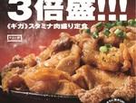 やよい軒、肉だらけの豪快メニュー「牛・豚・鶏のスタミナ肉盛り定食」