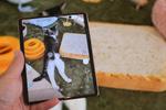 サムスンの折りたたみスマホ「Galaxy Z Fold2 5G」は意外にも猫撮りに適している