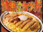大阪王将「50年目の情熱追い玉カツ丼」スープが染みたロースかつでご飯がすすむ