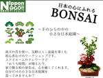 【イベント】2月10日(水)応募締め切り! 手作り盆栽で和の景色に癒されよう