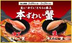食べたい!「本ずわい蟹」の極上なお寿司が「かっぱ寿司」で7日間登場
