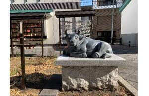 【連載】西新宿の神社にご挨拶に行ってきました!(前編/成子天神社周辺)