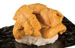 うにが炸裂!かっぱ寿司、通常3倍の「超絶のウニ」今しか味わえないボリューム