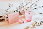 生チョコ専門店「MAISON CACAO」で限定商品発売、桜スイーツで花見体験をしよう
