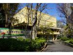 4月10日(土)開催! 新宿中央公園で「春のおたまじゃくし観察会」参加者募集