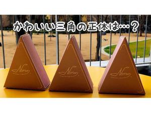 【連載/西新宿の映えを探せvol.1】ニューフェイスの冷凍チーズケーキ現る!