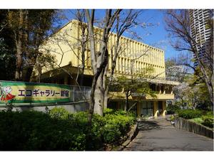 新宿でみどりのカーテンを育てよう! 2021新宿「みどりのカーテン」親子講座参加者募集