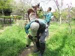 【横浜】飼育員のとっておき写真見たい! 飼育の日特別企画、写真展を横浜市立金沢動物園で開催