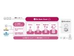 ウイングアーク1st、「Dr.Sum Cloud」に中堅企業向けのEntryライセンスを追加へ