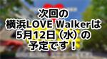 次回の横浜LoveWalkerは5月12日(水)を予定しております!