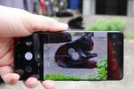1億画素カメラの超高性能スマホ「GALAXY S21 Ultra 5G」は猫を撮ってもウルトラだった