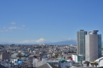 【連載】83太郎おすすめ! 港南区の絶景スポット