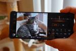 猫にも瞳AFが対応するXperia 1 IIIで屋内の猫を撮影