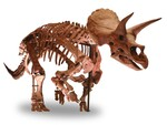開幕まであと9日! パシフィコ横浜「DinoScience 恐竜科学博」の展示物などが公開