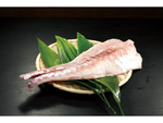 「スギ」という魚を知っている? 沖縄ブランドの希少な養殖魚を「くら寿司」が全国で提供
