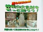 【新宿/熊野神社】夏の恒例!「神社の文化財をもっと知ろう」を開催