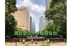 【連載/日なたハンターvol.3】芝ピクニックな日なたdeデトックス~新宿中央公園~