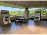 8月12日は「世界ゾウの日」、金沢動物園にて特別展を開催中(8月31日まで)