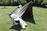 テントを買った情報2021