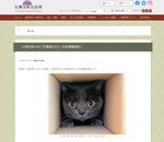 とっておきの猫写真が集結! 「大佛次郎×ねこ写真展2022」作品募集を開始
