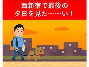 【連載/西新宿をたずねて3000歩Vol.4】~西新宿最後の夕日を見てみたい!~