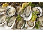 真牡蠣プレートが半額で食べられる! ガンボ&オイスターバーにて「POWER OYSTERフェア」9月30日まで開催