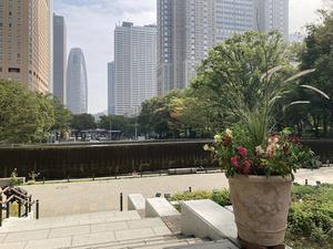 連載:【新宿/中央公園】寄せ植え展示中! 新宿名物の内藤とうがらしは東京江戸野菜