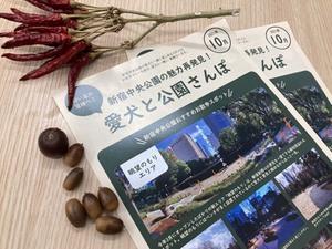 連載:【新宿/中央公園】パンフレットで中央公園の達人になる!
