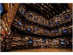 本が壁を埋め尽くす「本棚劇場」を全国の書店でVR体験