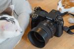 富士フイルムの中判ミラーレス「GFX50S II」はチルトモニターと手ぶれ補正付きで猫撮りに最適