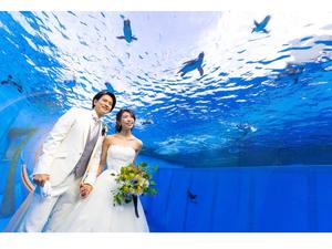 一生の思い出を水族館で! 横浜・八景島シーパラダイスで「シーパラフォトウェディング」の予約を受付中