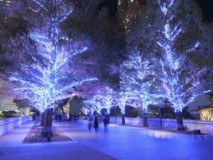 ライトアップされた冬の横浜を見に行こう! 「ヨコハマミライト2021~みらいを照らす、光のまち〜」11月11日スタート