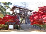 老舗が続々! 秋田市のスイーツは、伝統に裏打ちされた歴史ある逸品ぞろい